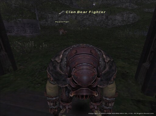 Clan Bear Fighter