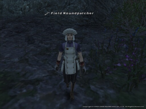 救護兵 Field Woundpatcher